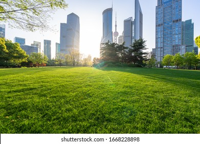 green lawn with city skyline in shanghai china