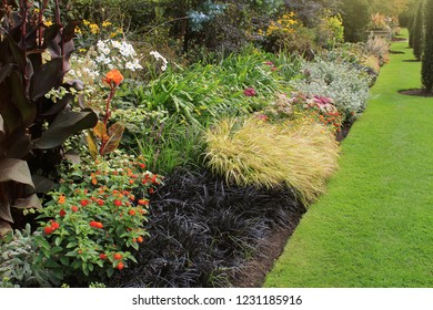 Green lawn in a colorful landscape formal garden. Beautiful floer garden .