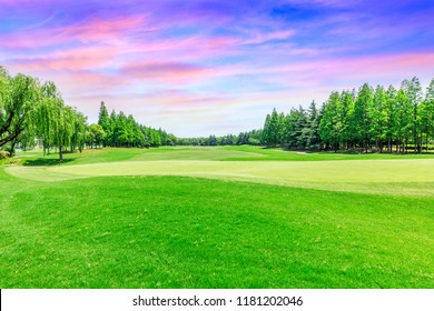 Green lawn and forest with beautiful sky sunset cloud landscape