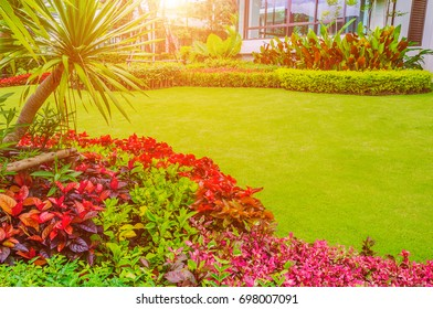 Green lawn, the front lawn for background,garden landscape design with modern house