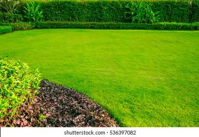 Green lawn, Garden landscape design