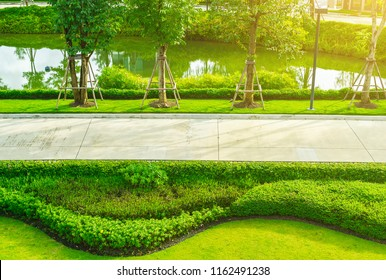 Green lawn, Garden on the front lawn Decking, Landscape formal front yard has been beautifully designed.