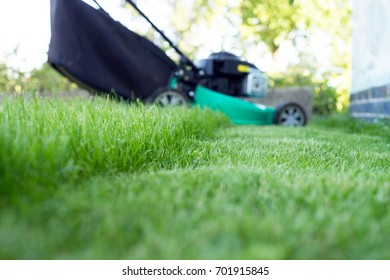 green lawn and lawn mower