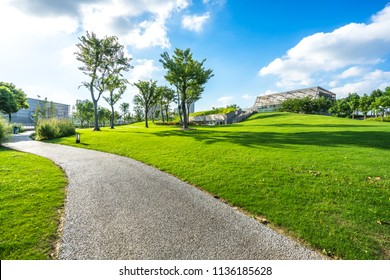 green lawn in the park