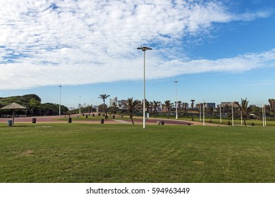 Green lawn paved promenade and palm trees against city skyline in Durban, South Africa.