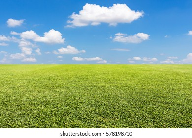 Green lawn and sky background