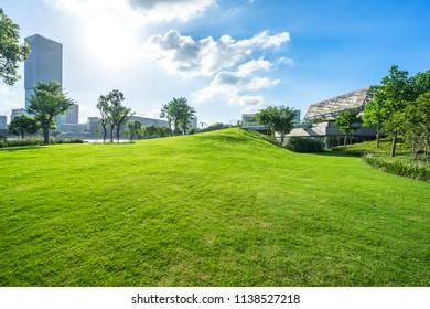 green lawn wity city skyline