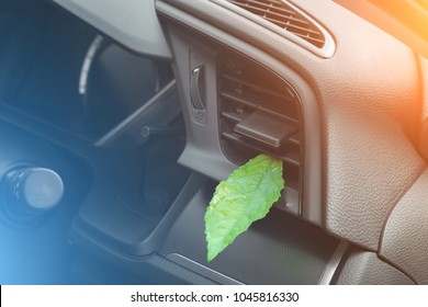 Green leaf in the car air. Clean air conditioning.Health-care concept.