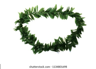 Green Leaf Hawaiian Lei. Isolated on white. Room for text.
