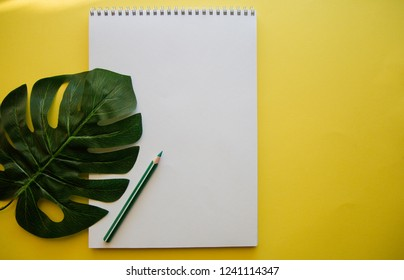 green leaf of monstera and green pencil on white album on yellow background flat lay the view from the top with copy space