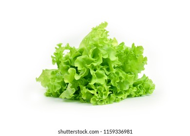 Green leaf salad on white background isolated