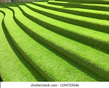Green leaves background. artificial grass. Stairs.