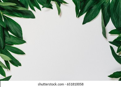 Green leaves border. Leaves of peonies. Frame of green leaves. White wooden background.