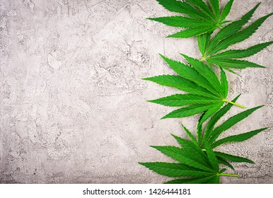 Green leaves of cannabis. Leavs of hemp. Top view. Flat lay.