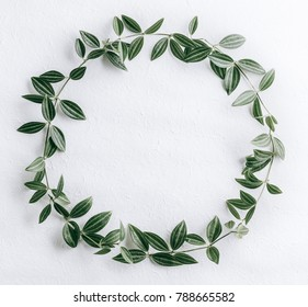 Green leaves circle