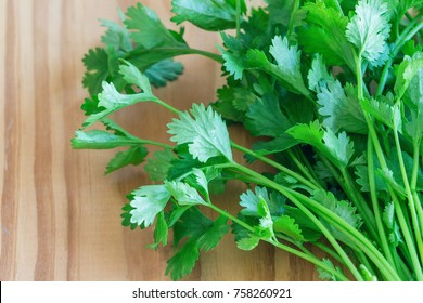 Green leaves coriander or cilantro lay on wood table in top view flat lay with copy space. Food preparation concept for fresh vegetable.