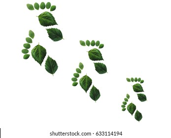 Green leaves foot steps isolated over white background. Environmental concept. Ecology concept.