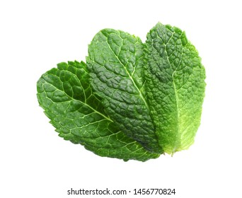 Green leaves of fresh aromatic mint isolated on white