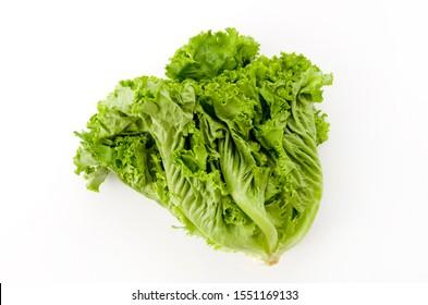 green leaves lettuce on white background