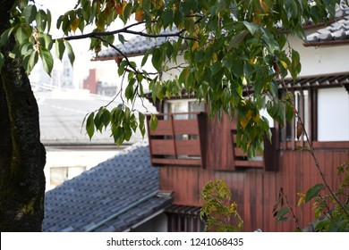 Green leaves over a Japanese ryokan 2