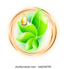 Green leaves in rings, with yellow oil drops