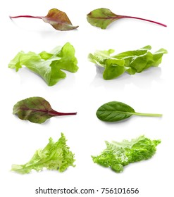 Green leaves of salad mix on white background