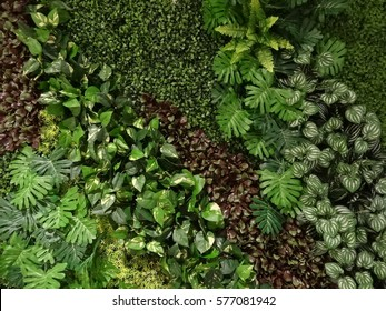 green leaves wall texture