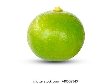 Green lemon isolated on white background and Clipping path