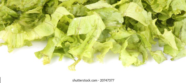 green lettuce leaves isolated on a white background