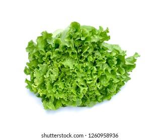 Green lettuce on white background.