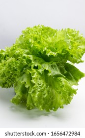 Green lettuce  on white background, close-up