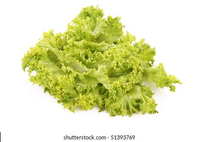 Green lettuce salad isolated   on white background