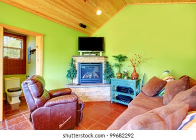 Green living room with TV and fireplace and toilet. Separate small house near the pool.