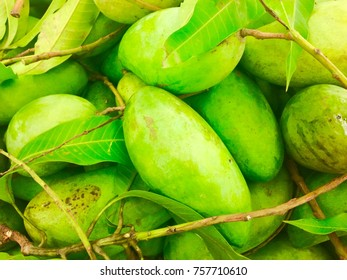 Green mango for sell in morning market in Thailand