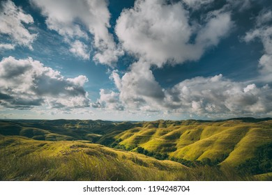 Green meadow, cloudy sky. Landscape. Sumba island. Amazing scene the stunning meadows covered with the dense grass. Bright blue cloudy sky. Sumba island, Indonesia. Untouched wild nature.