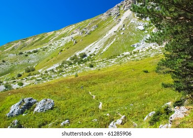 Green meadow in highlands