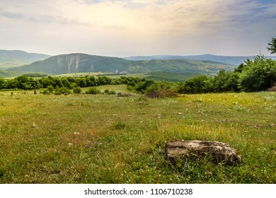 Green meadow on the background with distant mountains. Open field with green grass.