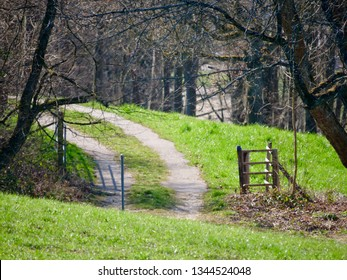 green meadow of swiss jura landscape with path to the forest near Bubendorf. CH Switzerland