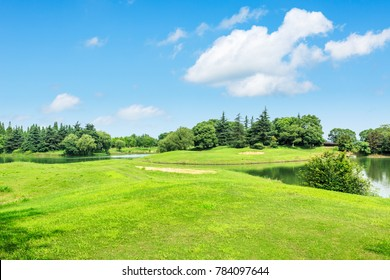 green meadow and trees with pond landscape in the nature park,beautiful summer season