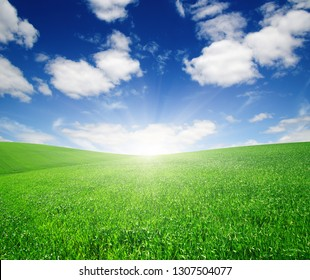 Green meadow under blue sky with clouds and sun.