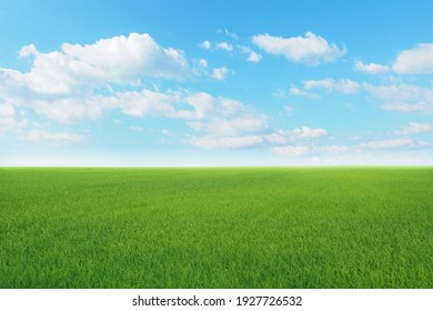 Green meadows with blue sky and clouds background. - Shutterstock ID 1927726532