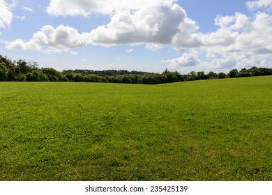 green meadows, Cornwall, landscape of hilly lush Cornwall countryside with green grass in large field