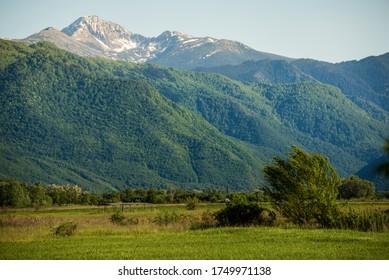Green meadows and Retezat Mountains National park, Transylvania, Romania.