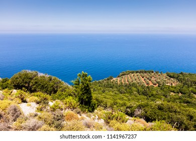 Green mediterranen island and blue sea
