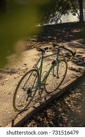 Green mint bicycle in autumn park