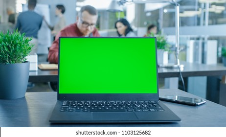 Green Mock-up Screen Laptop on the Table. In the Background Creative Young Professionals Working in the Modern Office.