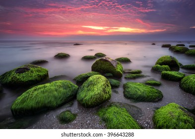 Green morning. Rocky beach seascape at sunrise.
