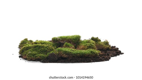 Green moss and dirt pile isolated on white background, with clipping path