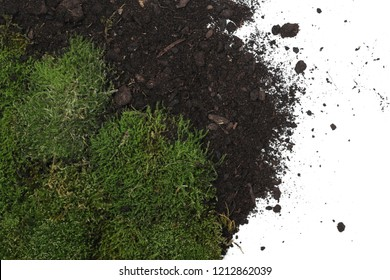 Green moss with dirt, soil isolated on white background, top view