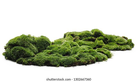 Green moss isolated on white background - Shutterstock ID 1302667360